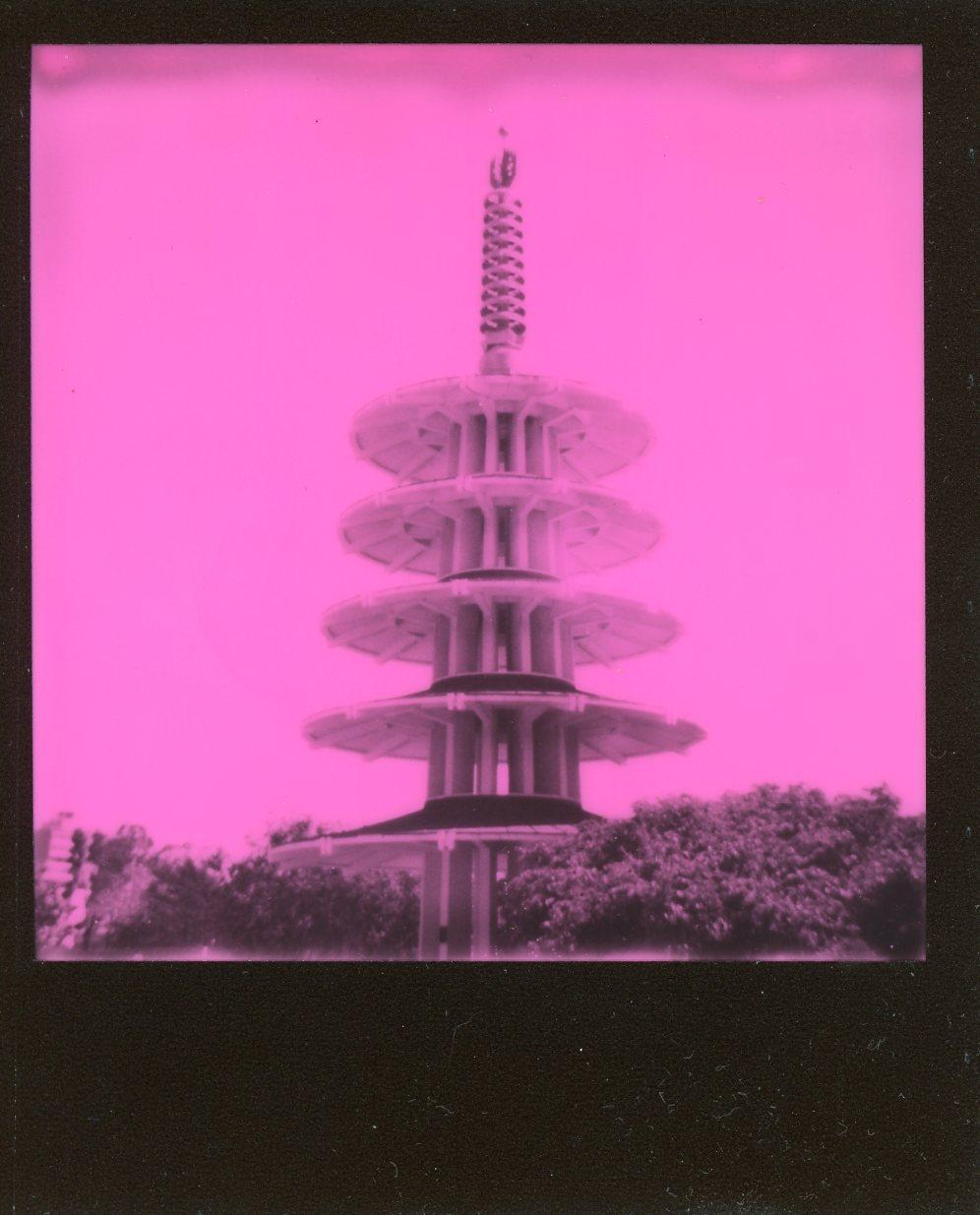 SF Polaroid004.jpg