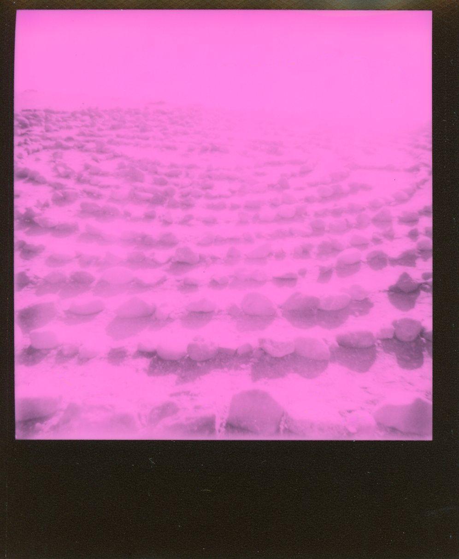 SF Polaroid006.jpg