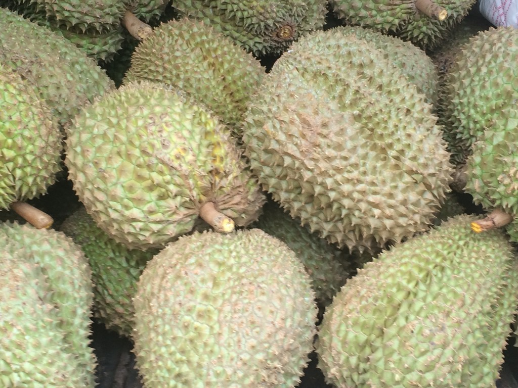 Durian! The stinky fruit.