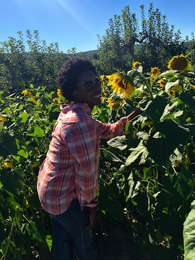 Sunflowers were also in full bloom! The bees were busy, and I'm staring a bee right in the face here.