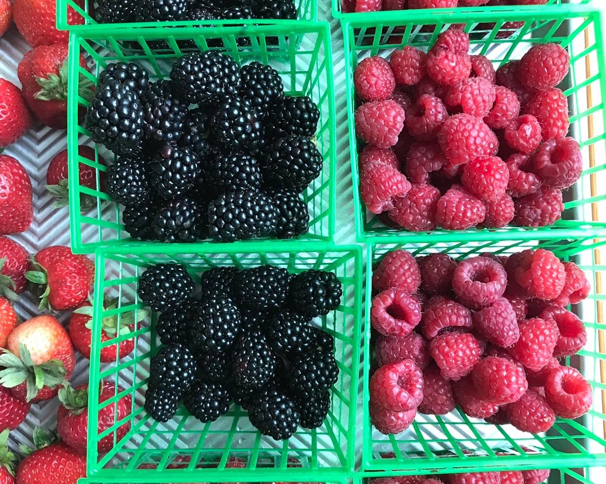 Summer+Berries.jpg