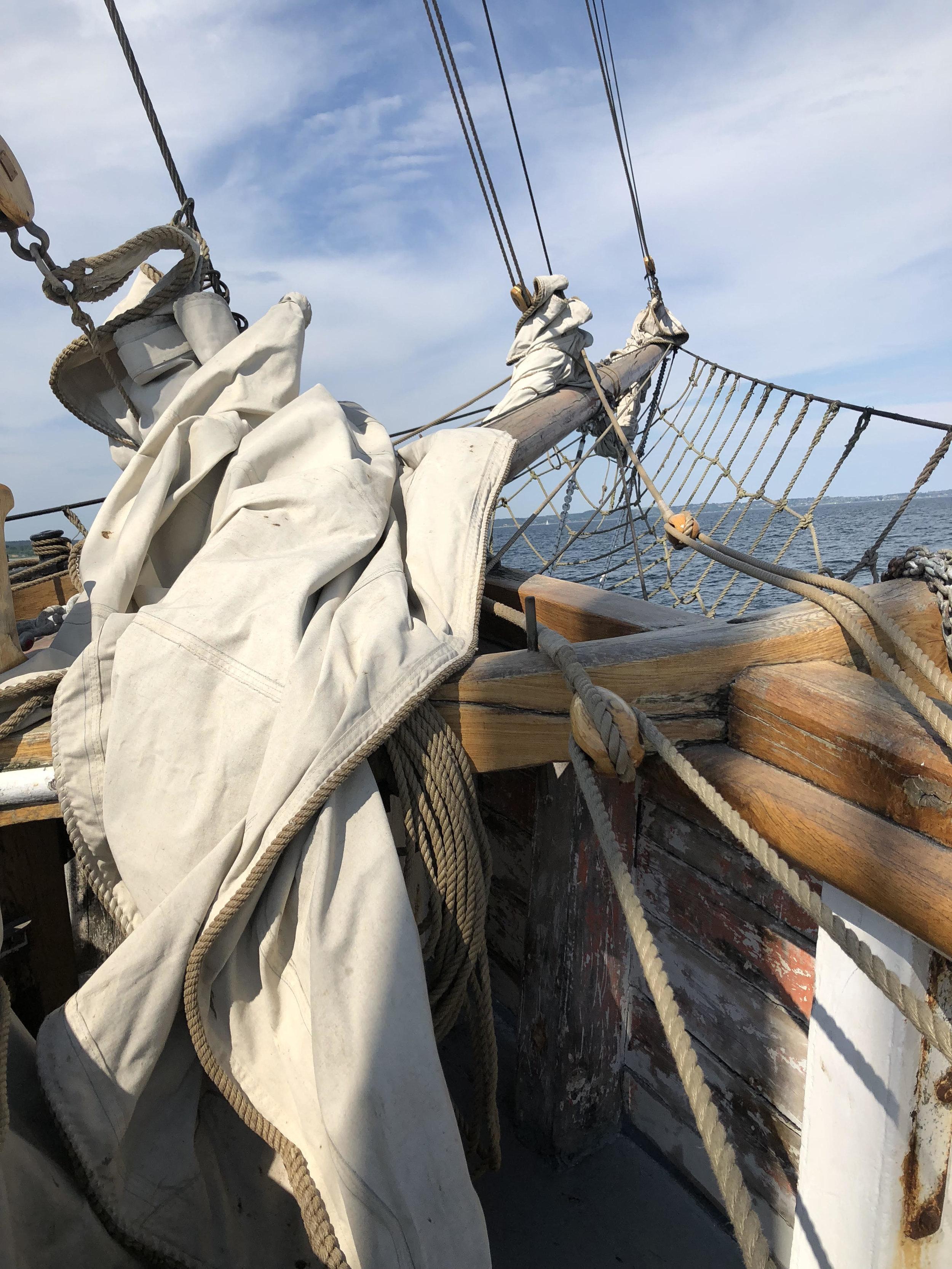 How every birthday should begin. Sailing off Jutland, Denmark.