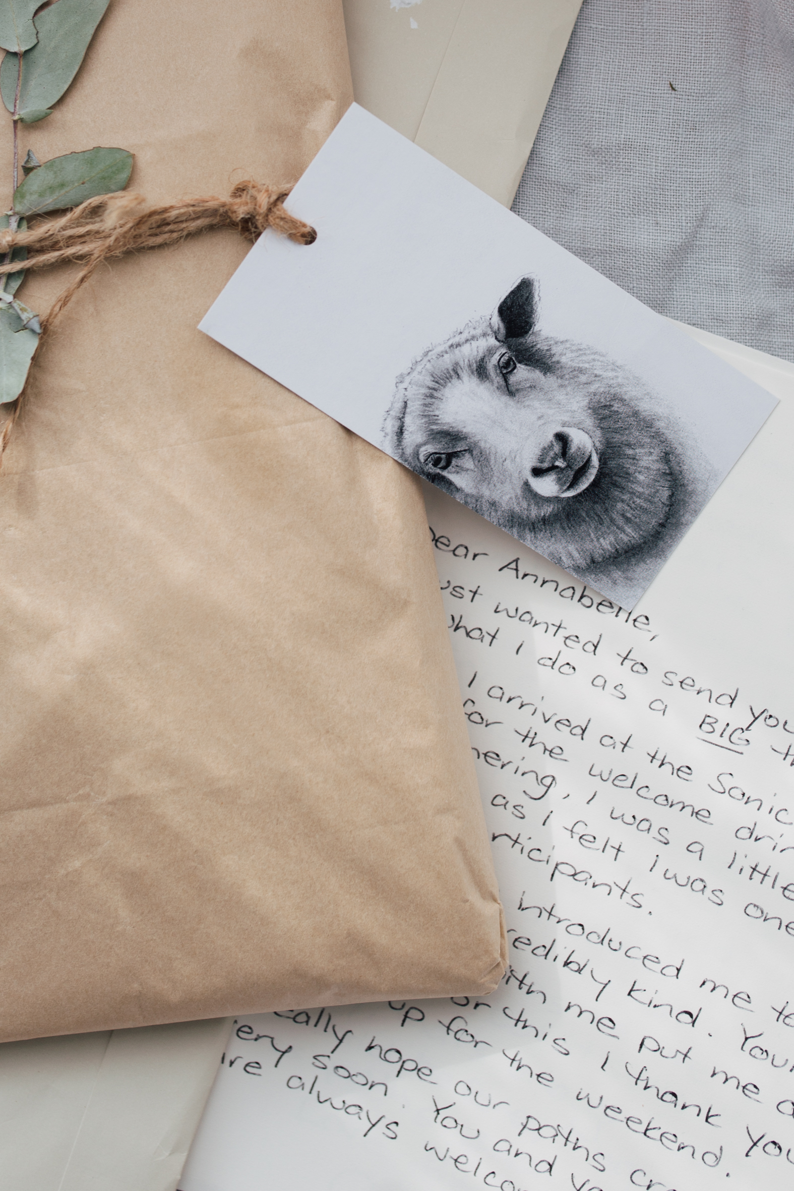 I received some lovely mail this week. Here is a letter from Cathy - on instagram as  @cathyhamilton_bongalong  - an artist who does exquisite animal portraits, which you can buy in gift card form as pictured here.