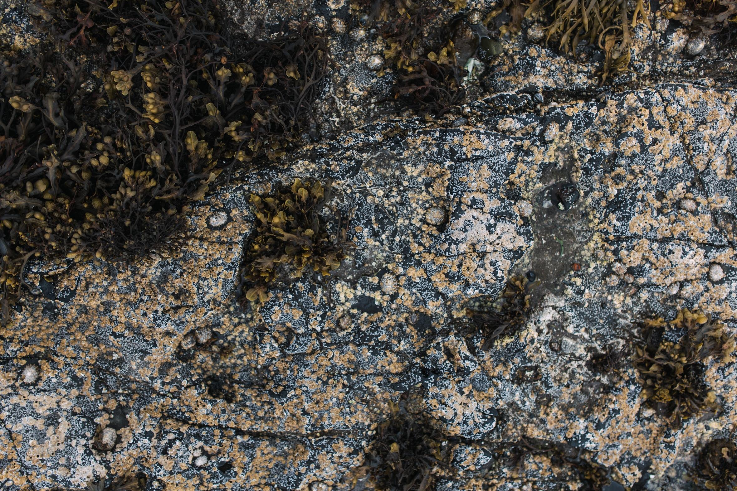 isle of skye - broadford-15.jpg