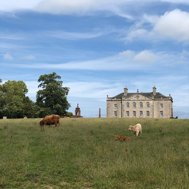 This is Auchinleck House in Scotland, where we are hosting our first international Dispatch To A Friend gathering in just over two months time. We are so excited about it and can't wait to meet those of you who are able to join us. . We continue to receive your beautiful letters and emails, or messages on instagram, and we are so grateful and touched by them. Late Sunday evening, we received an email from Hayley. You can read it on our Instagram stories. Hayley, if you are reading this now, I can't tell you how moved we were to receive it. Hayley, please keep in touch. We are so humbled to think you are listening to our podcast and proud of your endeavours to become an Australian scientist. . . To all of you in our Dispatch community - thank you for your love and support. Something special is happening here and we want you all to feel part of it. That our friendship and letters shared through our podcast draws us all together is hard to comprehend. But it does, somehow.  And our lives are enriched because of it. X