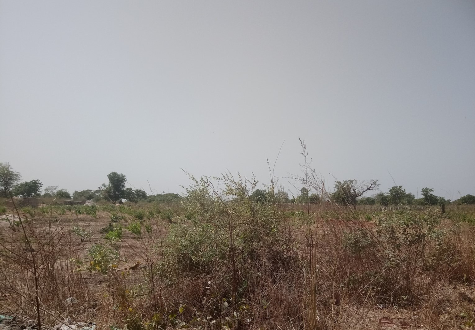 Land for sale in Gambia build a house holiday home DHK Estates