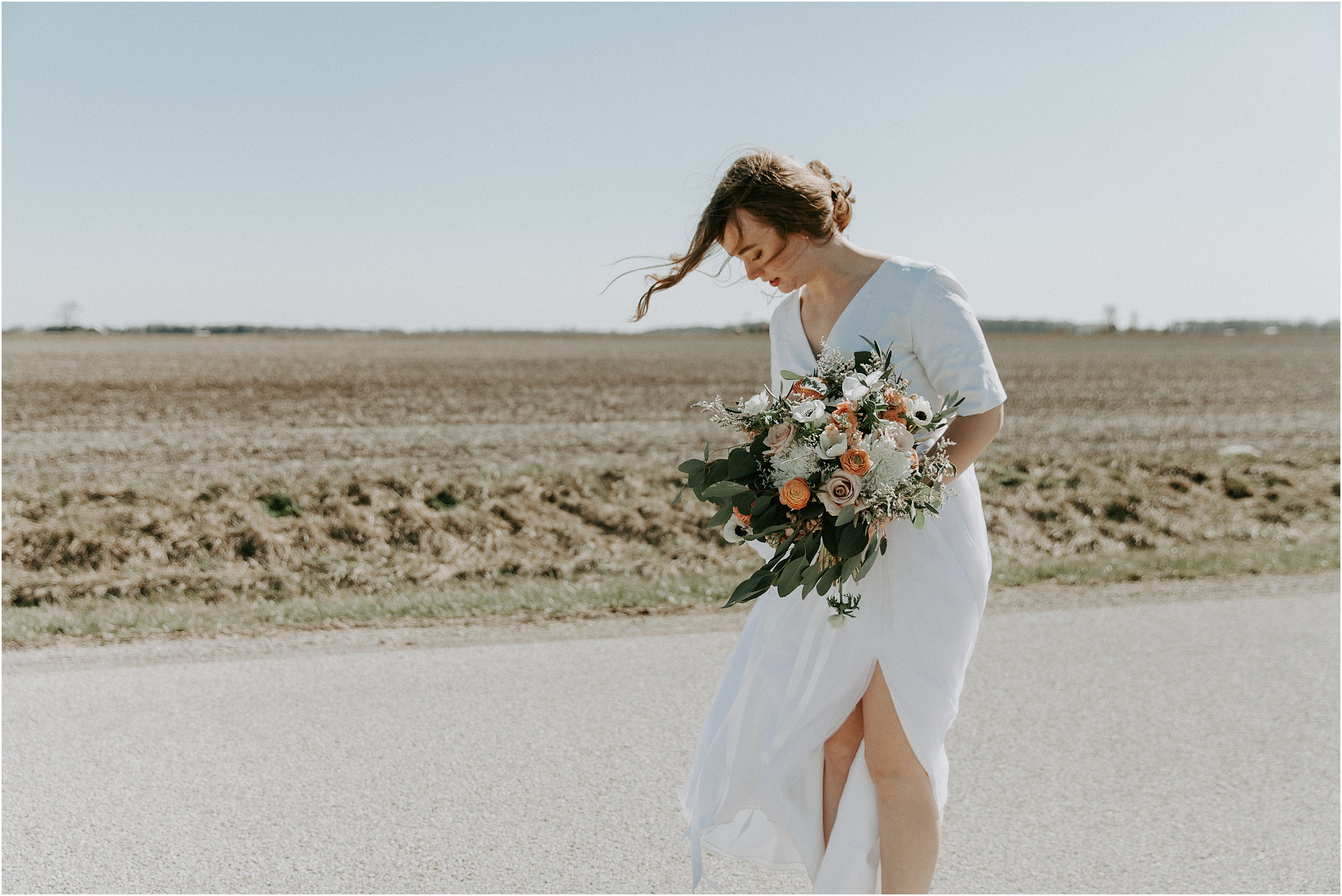 willow_creek_farm_champaign_wedding_wright_photographs_street_0407.JPG