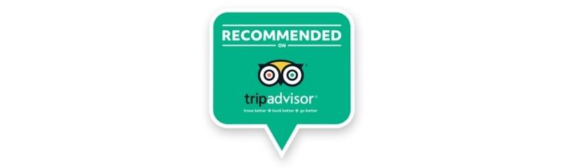 Trip Advisor for Email.jpg