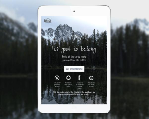 REI-iPad-Landing2opt.png