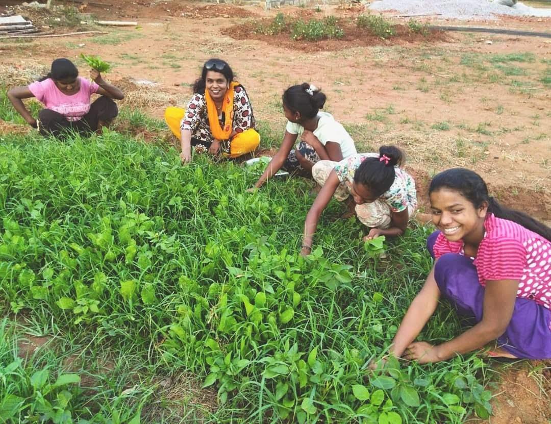 Picking spinach in the garden!