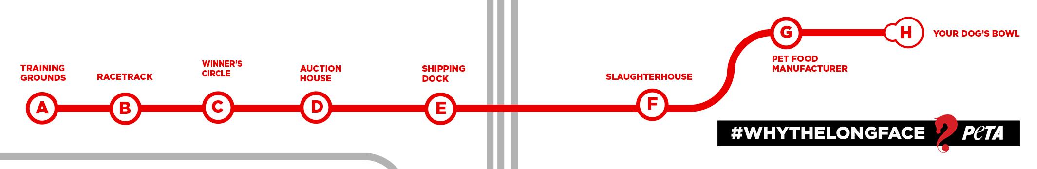 full-subway-map-on-train.jpg