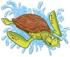 VBS Turtle.jpg