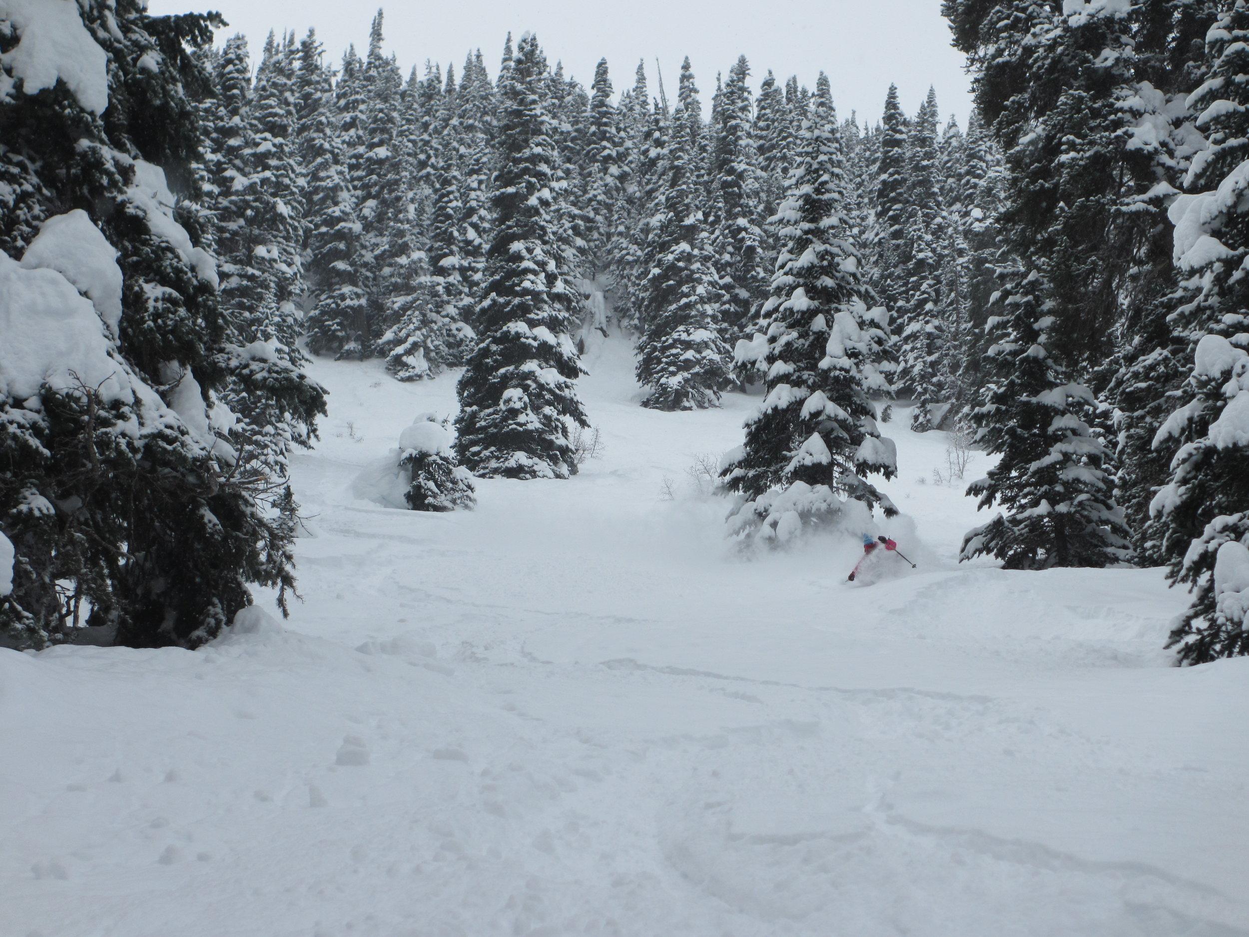Plenty of great tree skiing right near the hut. Erme getting deep.