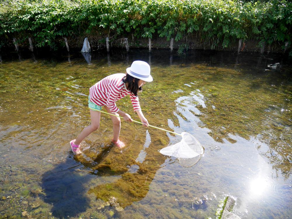 スボンをぎりぎりまでたくしあげて野川に入り、何かを捕まえようとしている長女。パパに似て無駄に美脚。う、うらやましい〜!