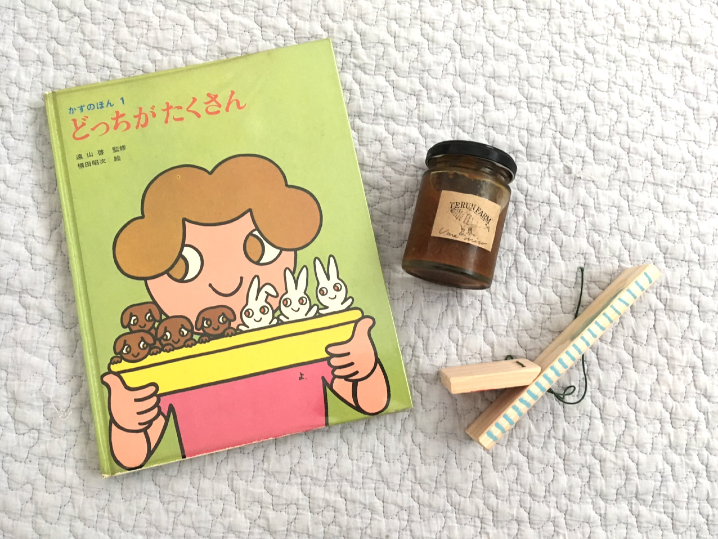 持ち帰ったものの一部。「古本泡山」さんの絵本、「てるんfarm」さんのびんもの。そして息子の作りかけのカタカタ。