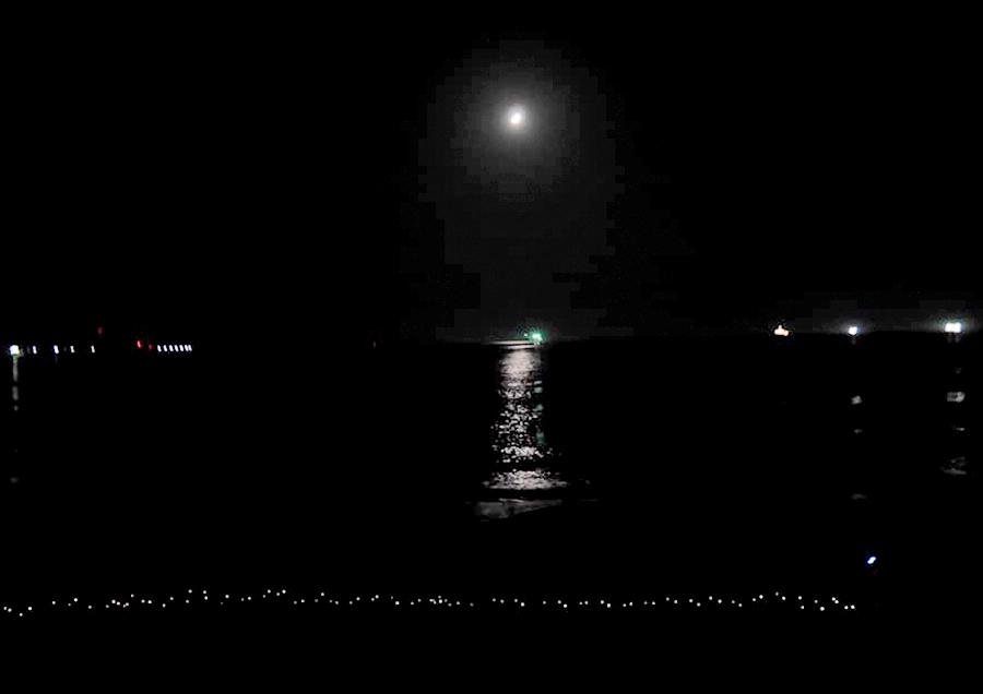 夜の海。波の音がいいですね〜!