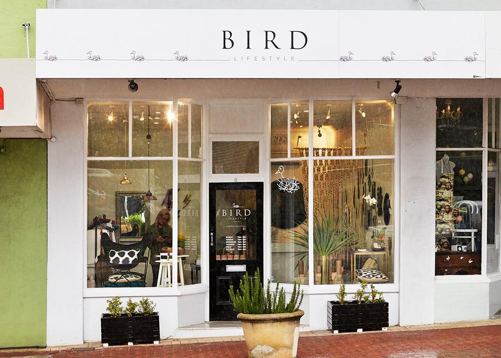 BIRD_5.jpg