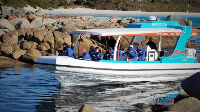 Bay of Fires, Eco Tour.