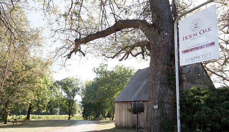 The beautiful Holm Oak Winery.