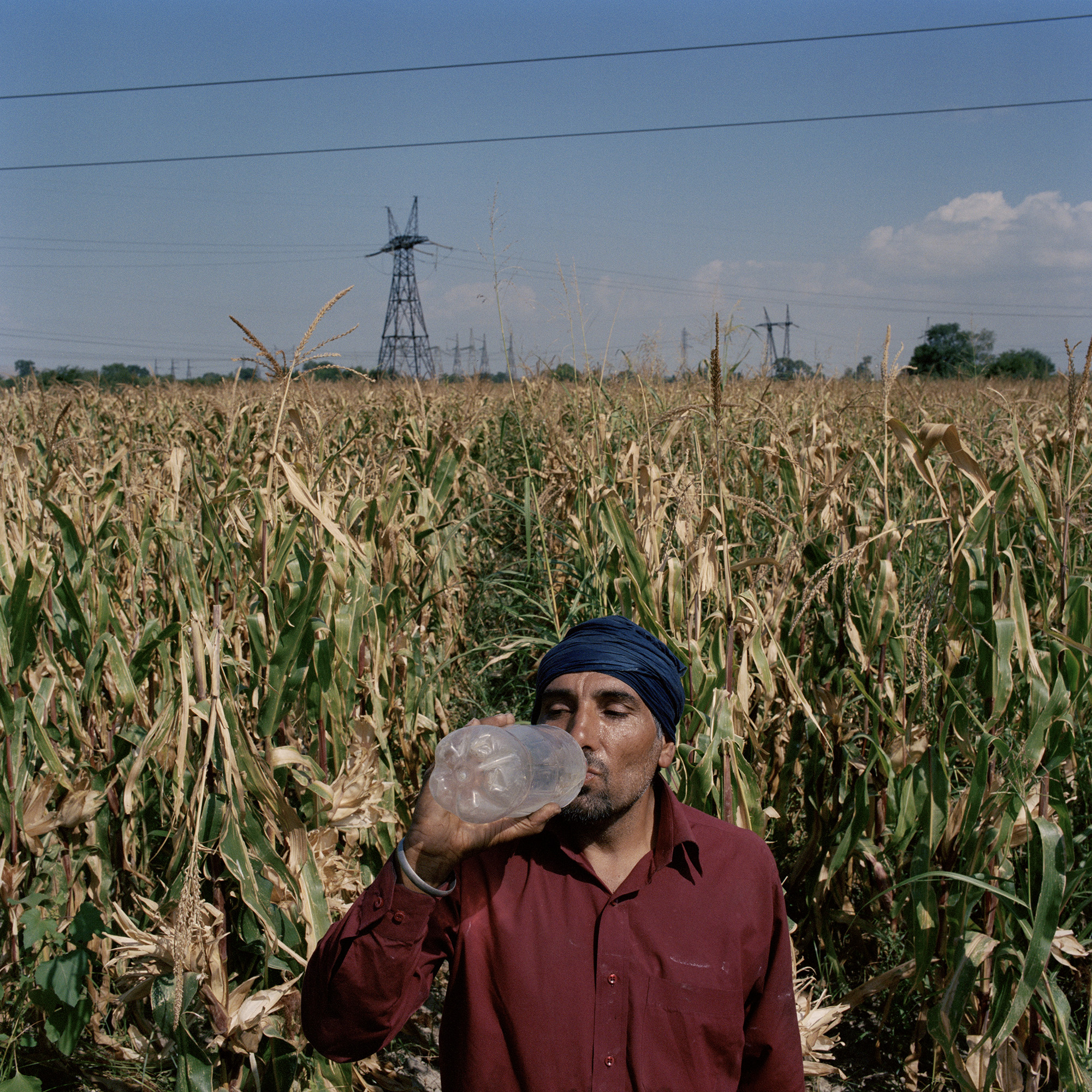 Sikh farmers_08.jpg
