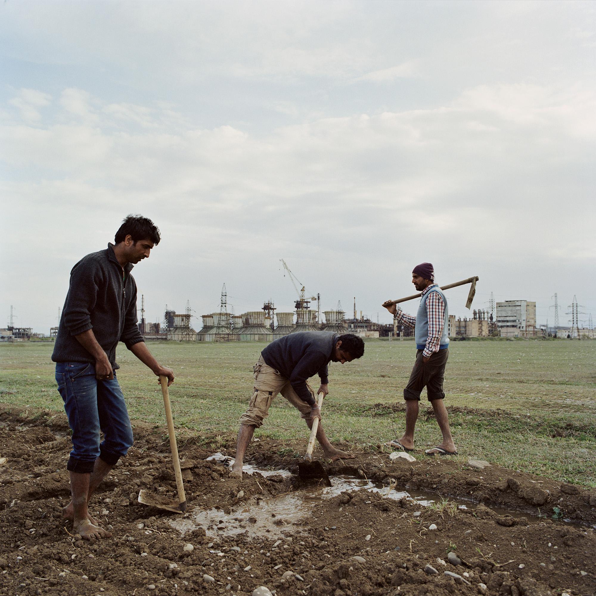 Sikh farmers_16.jpg