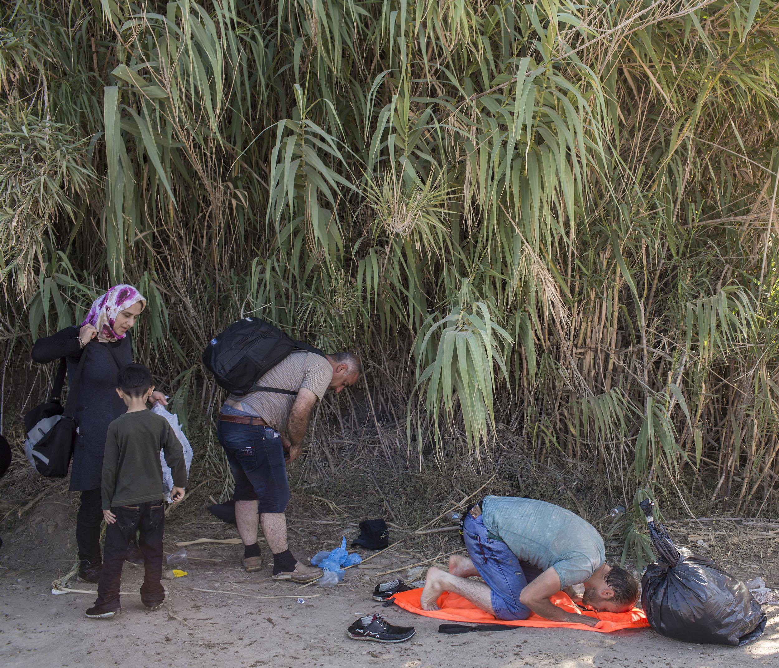 Shelter-35.jpg