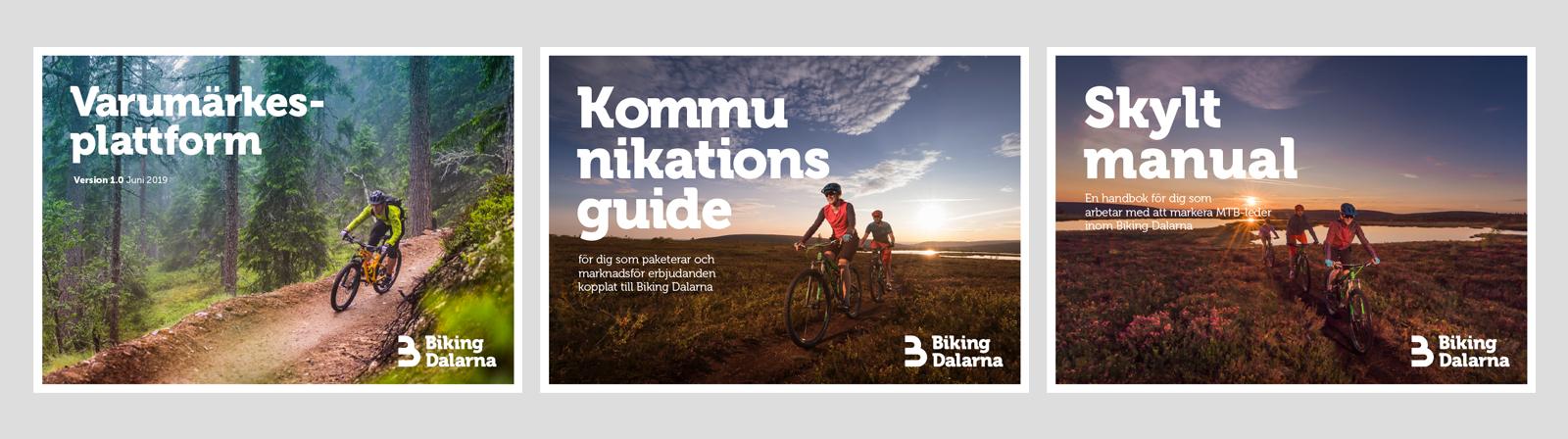 biking4.jpg