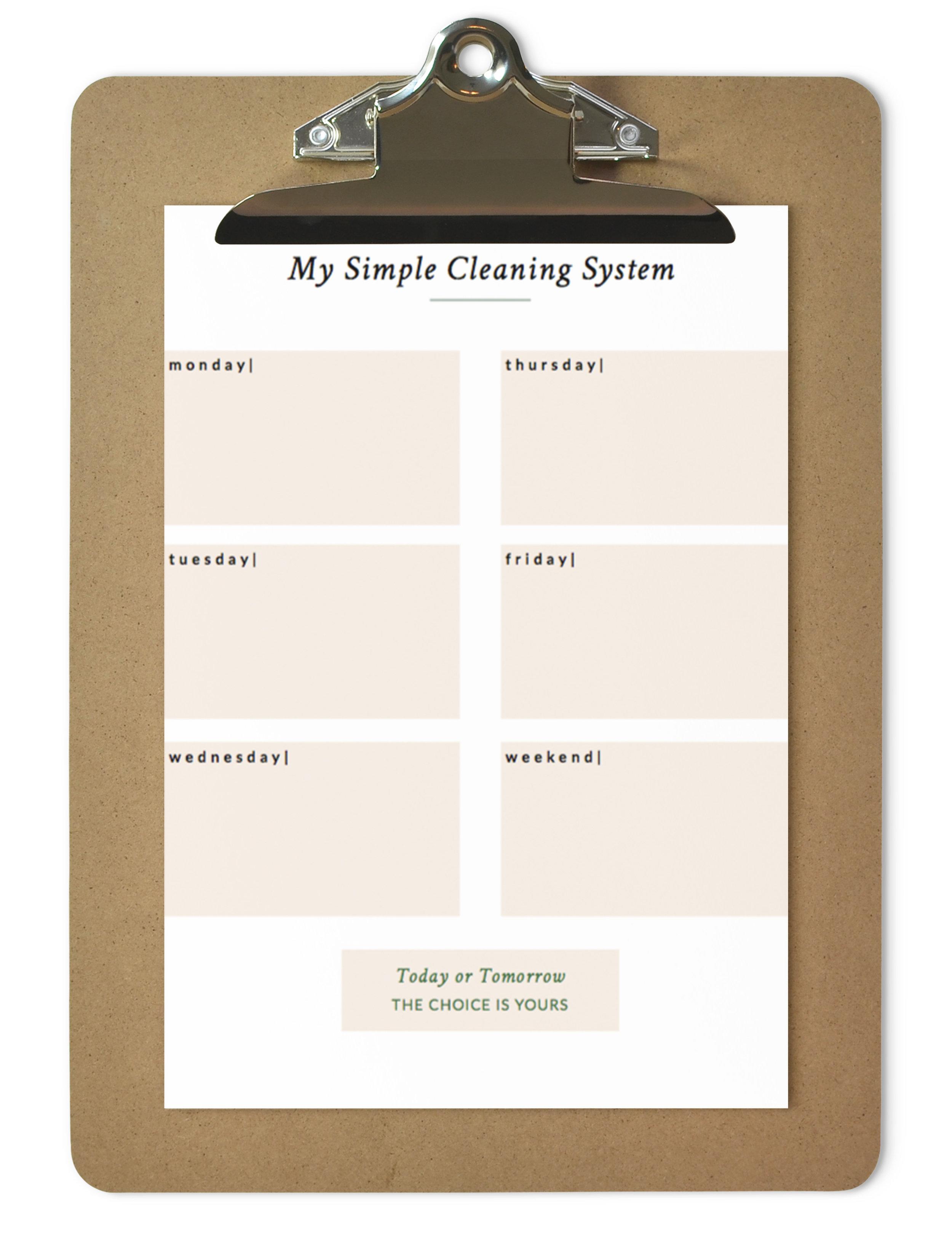 clean-system-printable.jpg