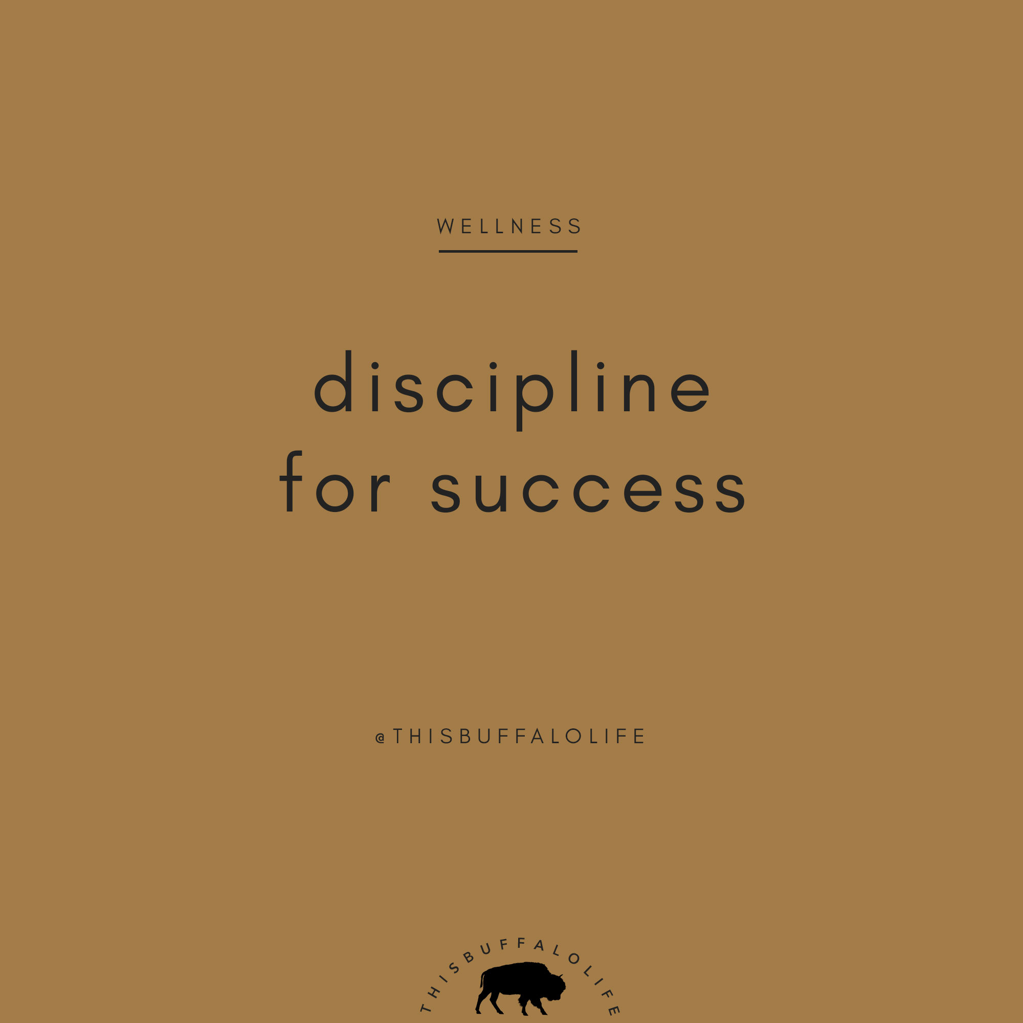 discipline-success.jpg