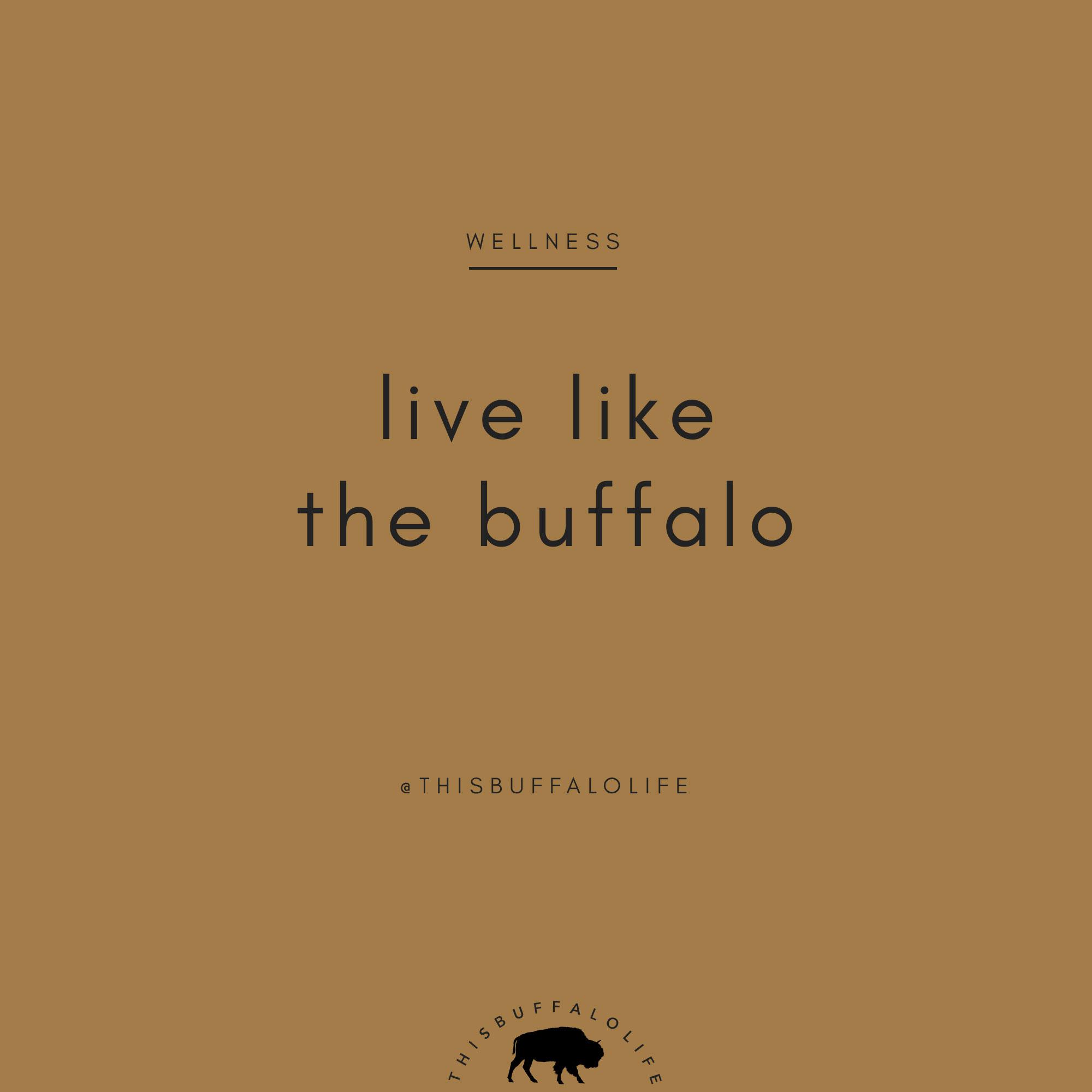 live-like-buffalo.jpg