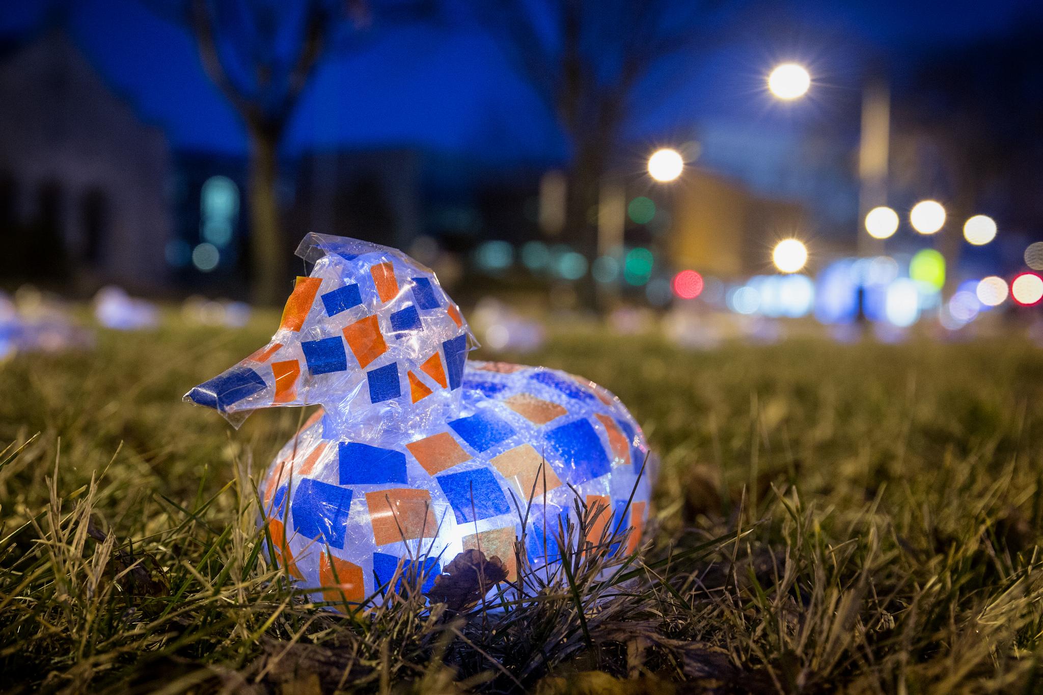 Blue and Orange Duck, #100DucksDC