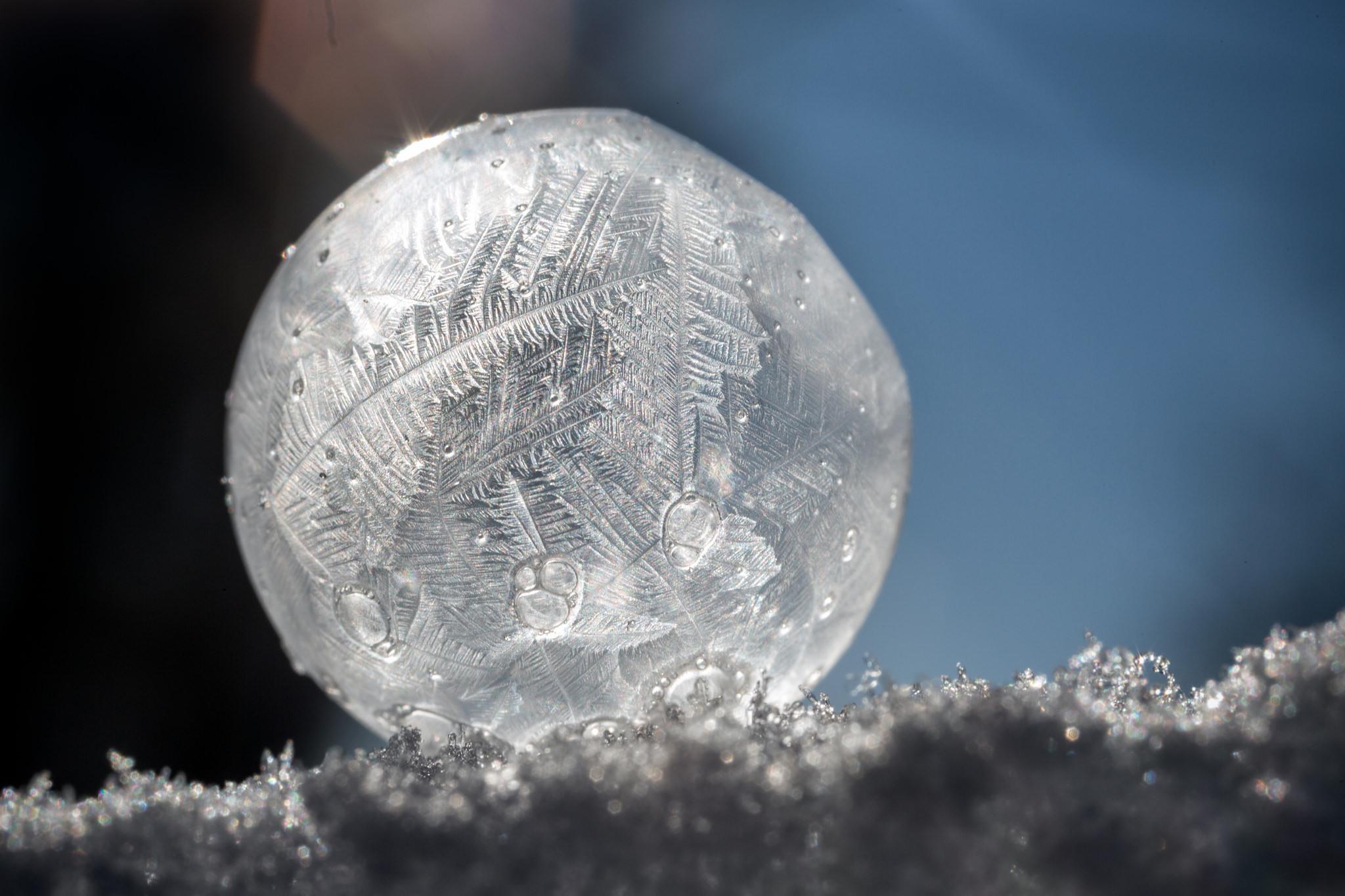 Frozen soap bubble in the snow, Park Rapids MN (-18 degrees)