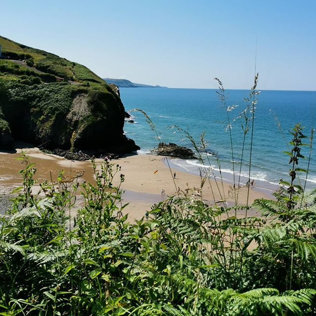 My favourite painting spot... Just above Llangrannog on the #ceredigioncoast path. I've painted here in all weathers - there is so much artistic inspiration in this neck of the woods! A perfect spot for dolphin & seal spotting. The Autumn months are stunning here and the beaches are so quiet - we have a little Sept & October availability (Inc. Half term) left if you fancy a bit of West Wales magic!  #coastalretreat #holidaycottage #thatchedcottage #dogfriendly #dolphinwatching #walescoastpath #welshcottage #nofilter