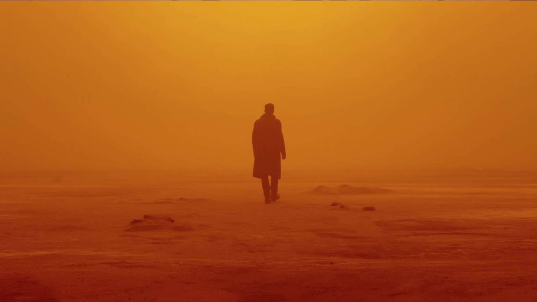Blade Runner 2049 (2017) - Directed by: Denis VilleneuveWritten by: Hampton Fancher & Michael Green