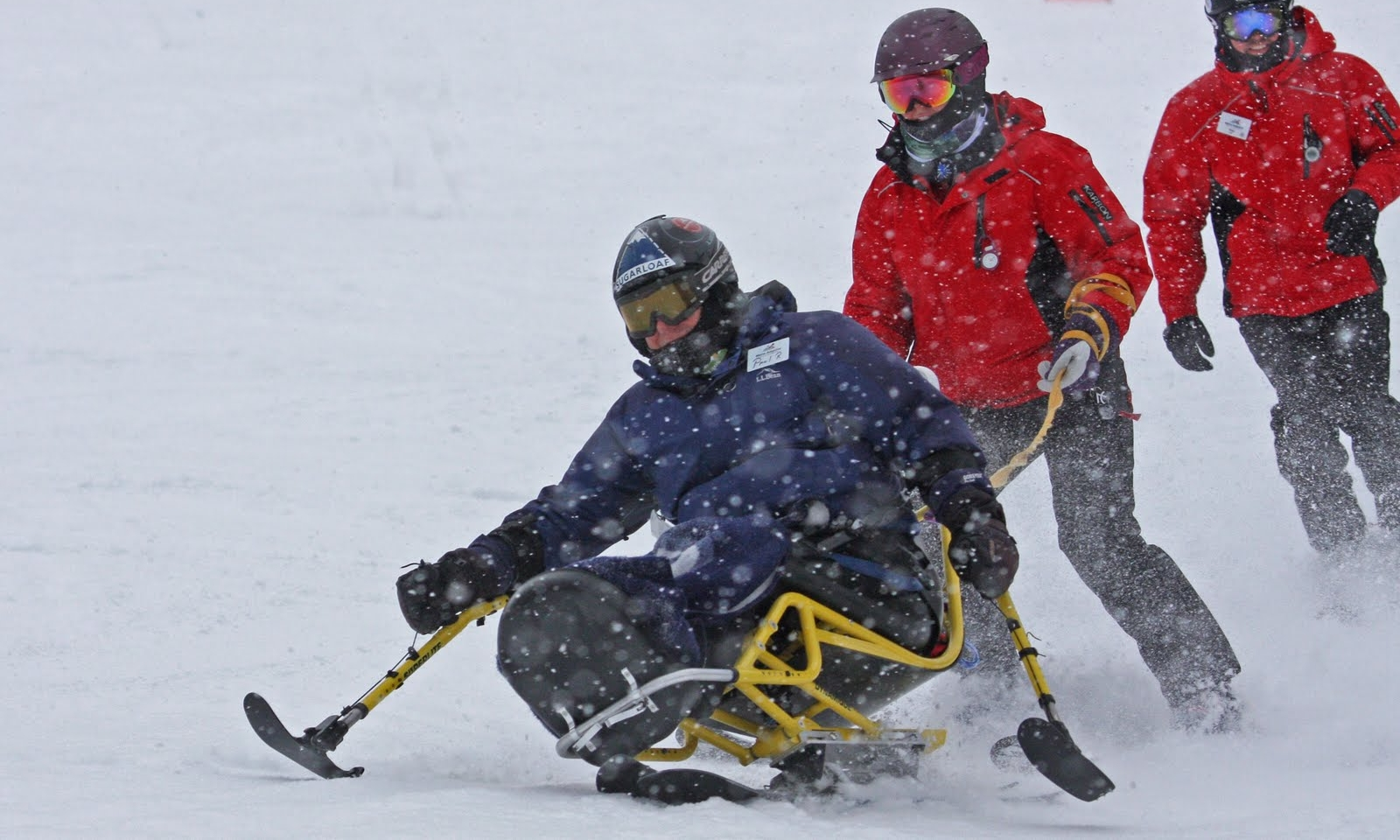 Alpine skiing and snowboarding -
