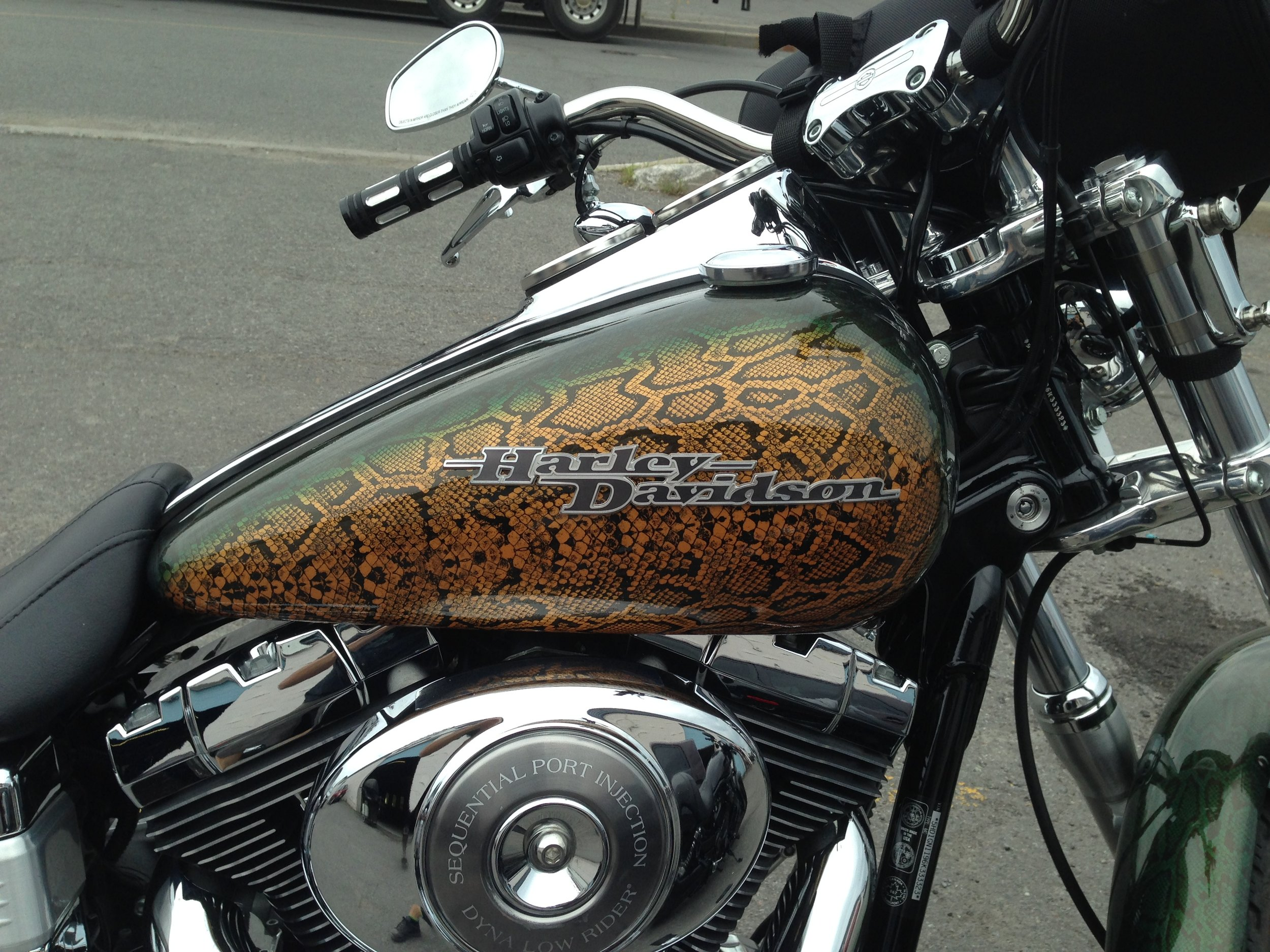 Custom Harley Davidson SnakeSkin Paint by Sketchs Ink Ottawa