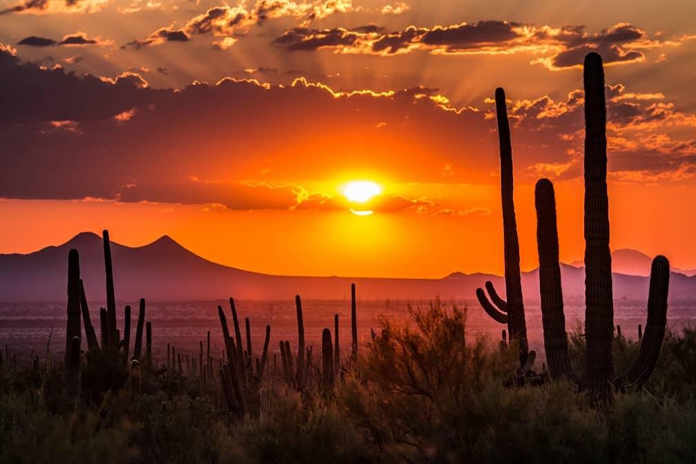Arizona SBA 7(a) financing