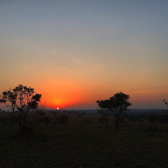 The beauty of the end of the day. Especially when your potty training toddler goes to sleep. 😉 Who can relate?! 😂. . . . #uganda #sunset #exploringtheglobe #exploretocreate #openmyworld #roamtheplanet #lonelyplanet #passionpassport #travelandleisure #livetotravel #traveldeeper #travelstoke #girlsborntotravel #globelletravels #girlsmeetglobe