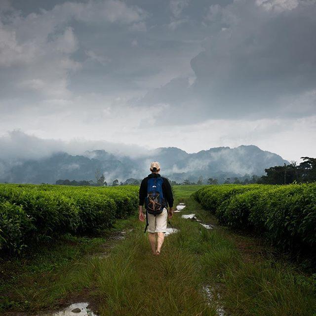 Some adventures are better with your BFF. Exploring the tea region of Rwanda was unforgettable. Have you been? . . . #rwanda #africa #tea #iblesstherainsdowninafrica #athomeintheworld #chooseadventure #travelawesome #destinationearth #mytinyatlas #tlpicks #dametraveler #darlingescapes #femmetravel