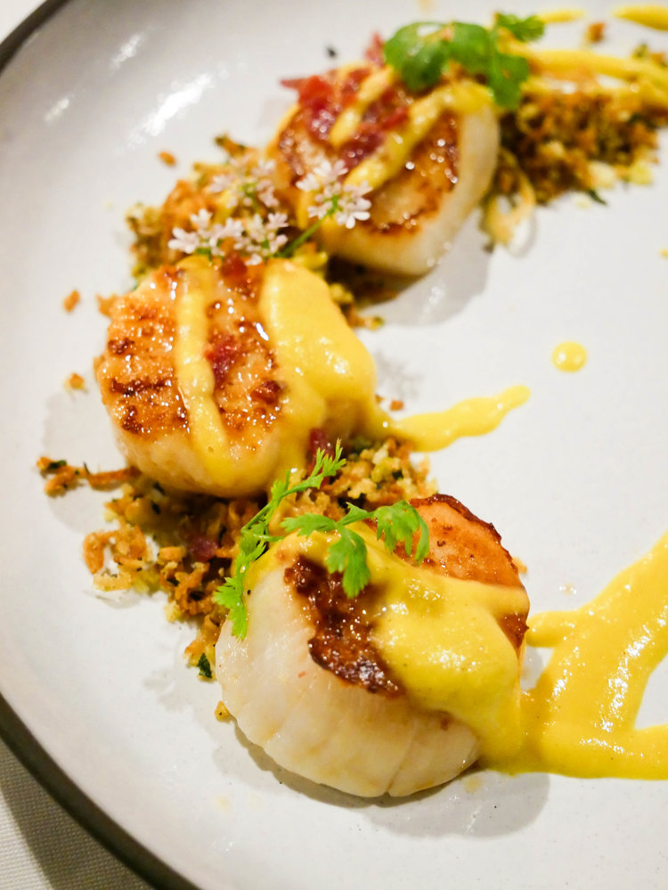 Scallops with corn purée
