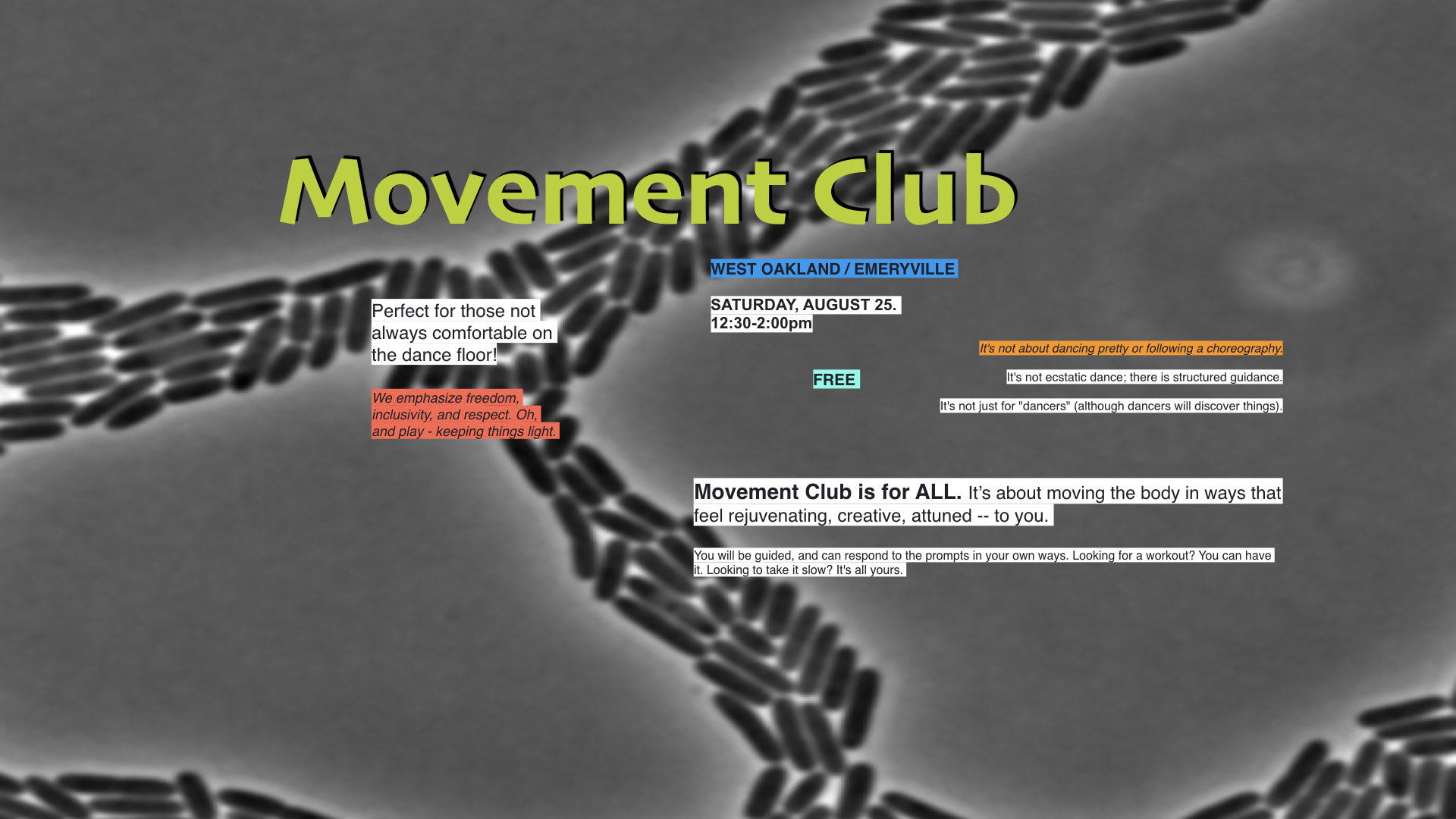 Movement-Club_FB-cover2.001.jpeg