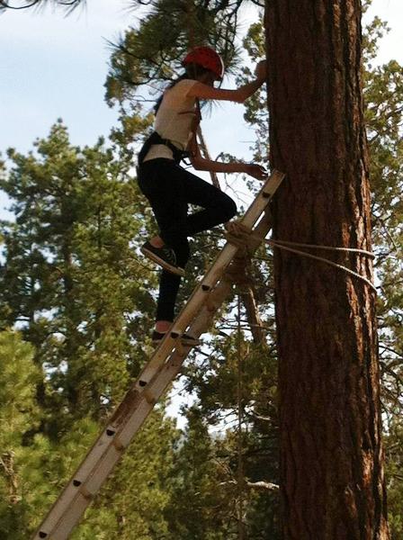 Claremont-Presbyterian-Church-youth-climbing.jpg
