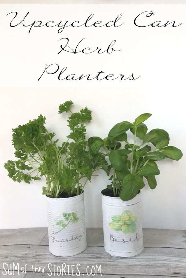 Upcycled Can herb Planters