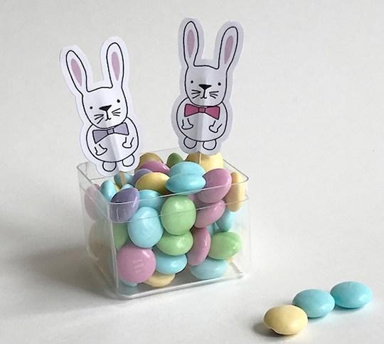 bunnypickswhite.jpg