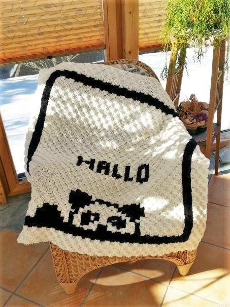 488. Babydecke 'Hallo Panda' 3.jpg