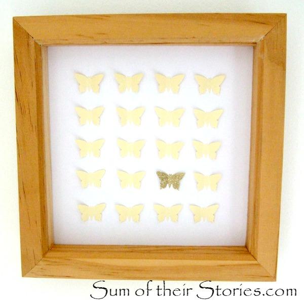 butterfly specimen picture.jpg