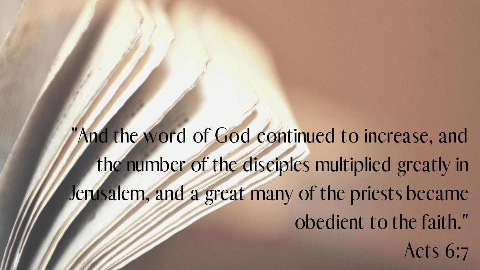 Copy of Gospel of Luke-64.png