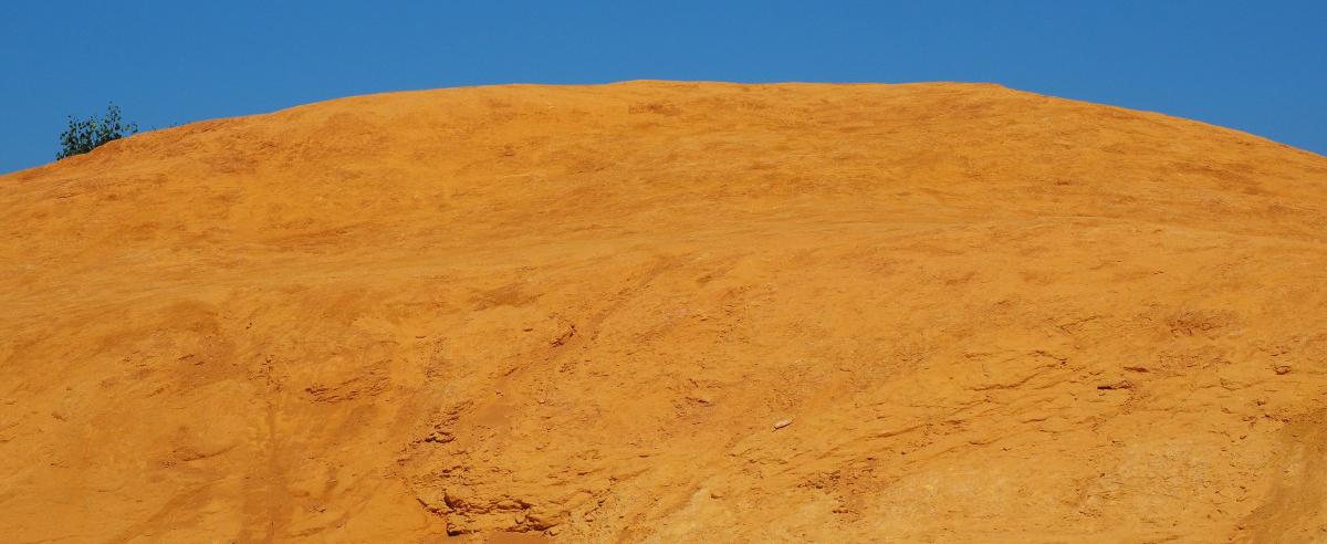 yellowhill.jpg