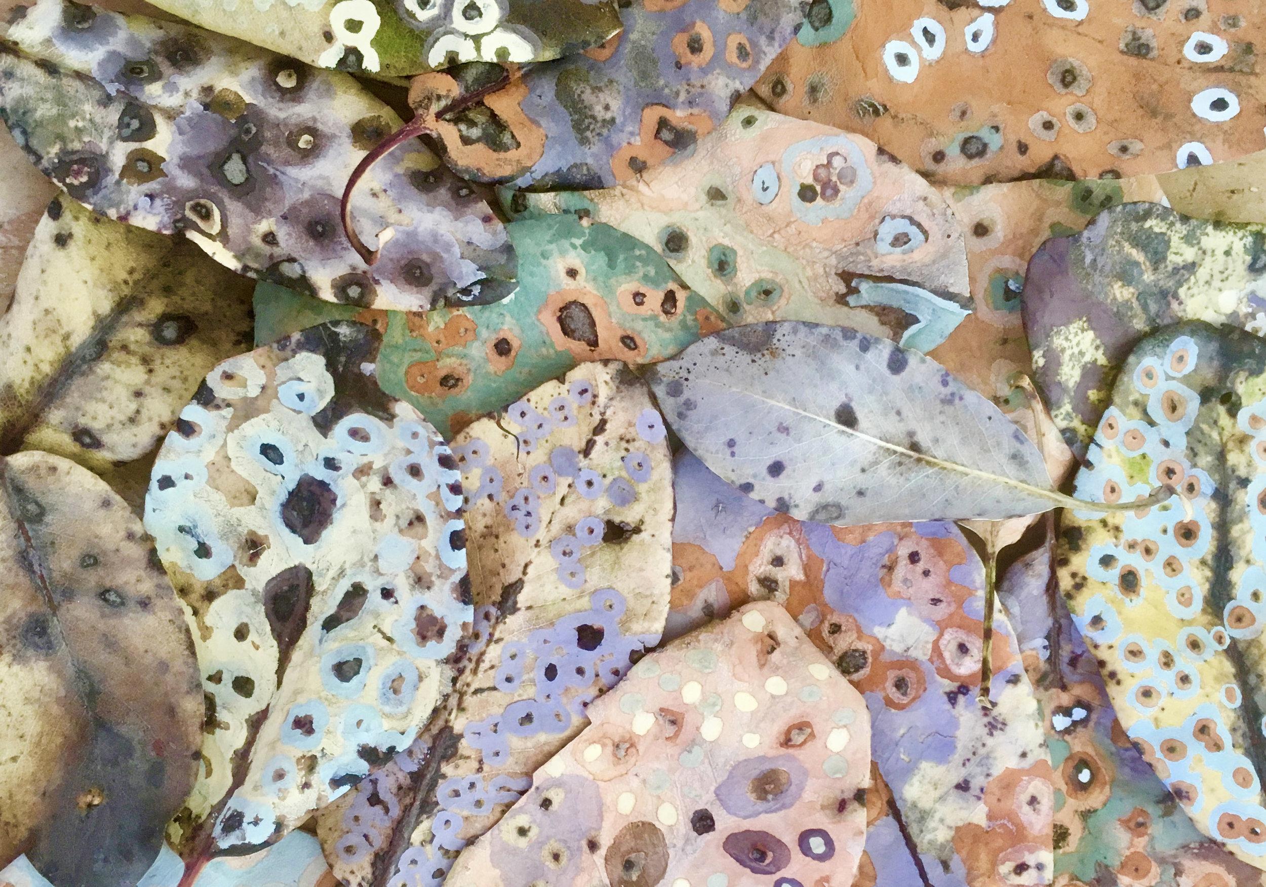 spottedleaves.jpg