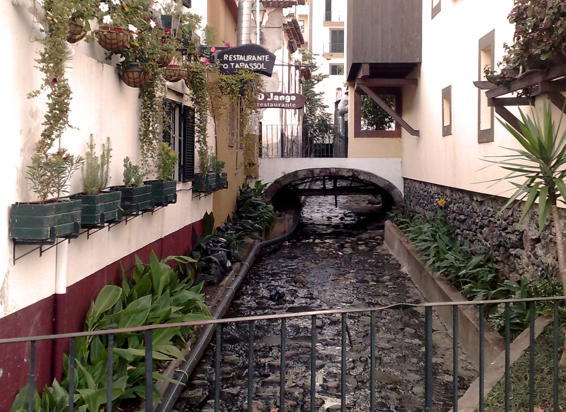 Bridge_over_stream_and_cafes,_Funchal,_Madeira-2.jpg